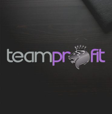 logo-design-team-profit